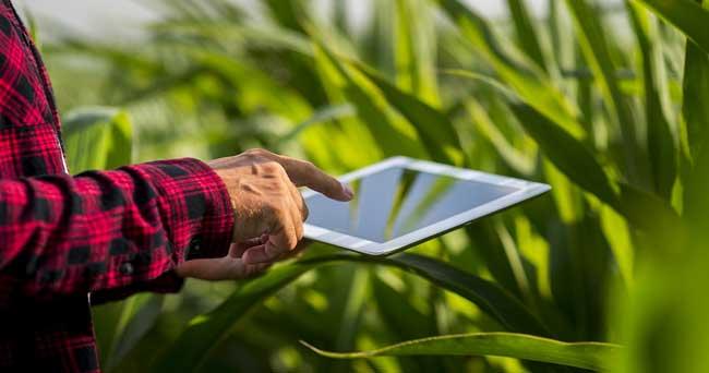 Consorzi Agrari, Erp unico in cloud per Agricoltura 4.0